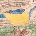 Niesha W. Gr. 1 - Photo Realistic Bird